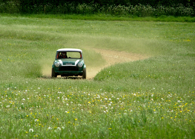 Mini in field